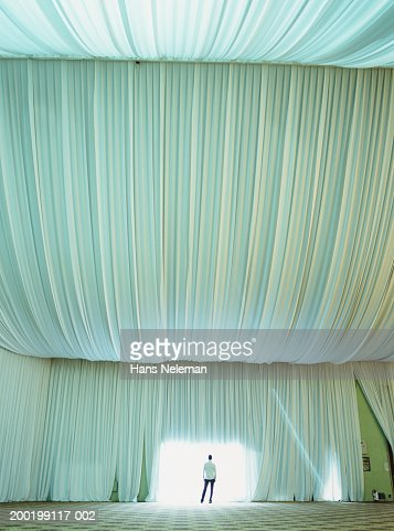 Young man standing at opening in tent, rear view : Stock Photo