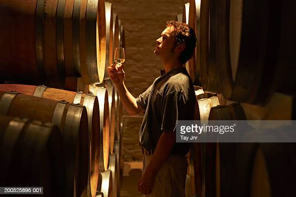 Young man tasting wine in cellar