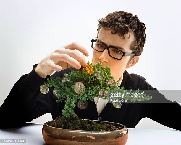 Young man tending bonsai tree with coins 'growing' on branches