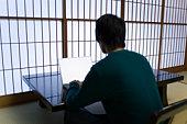 Young man using laptop, rear view, Japan