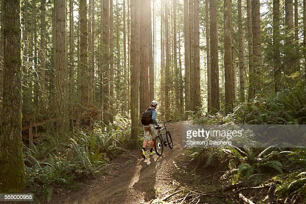 Young man walking mountain bike through forest, rear view