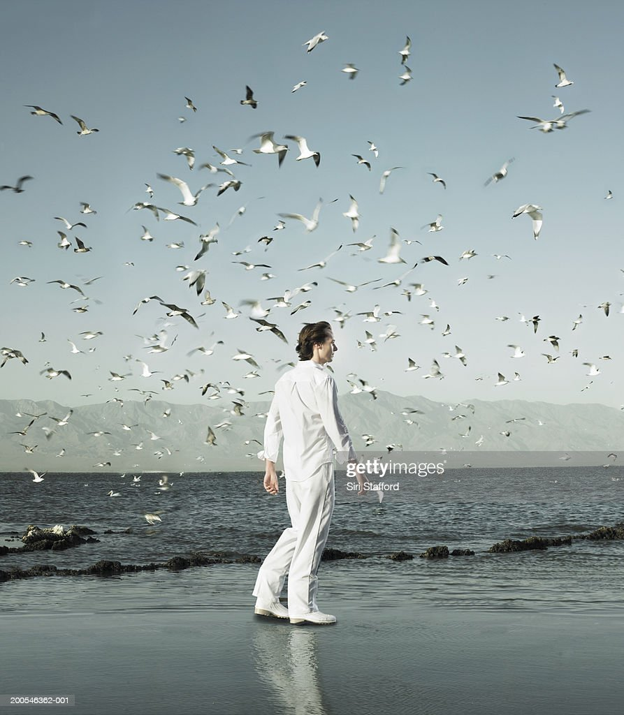 Young man walking on shore amongst flocks of birds (Digital Composite) : Stock Photo