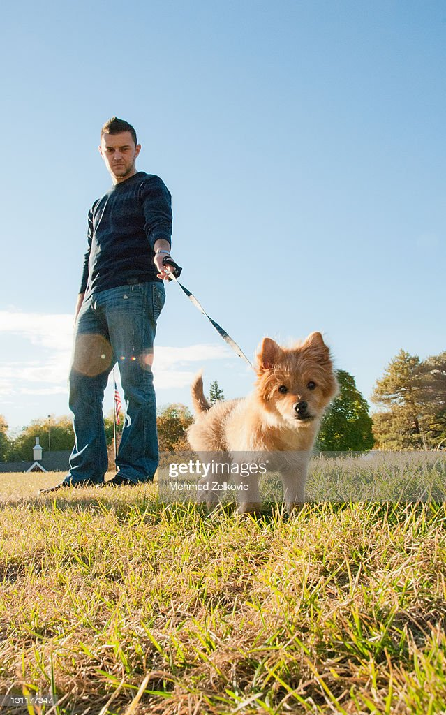 Young man walking with his dog : Stock Photo