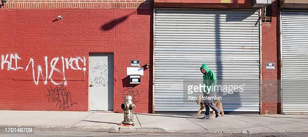 Jeune homme marchant chien