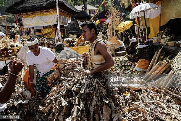A young man wears dried banana leaves during preparation for the sacred Barong Brutuk dance at Pancering Jagat Temple on October 13 2014 in Trunyan...