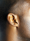 Young man's ear, side view, close-up
