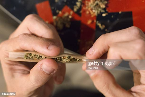 Young man's hands rolling marijuana joint close up BARCELONA COFFEE SHOPS CANNABIS Marijuana In Barcelona If you are in Barcelona you are in the...