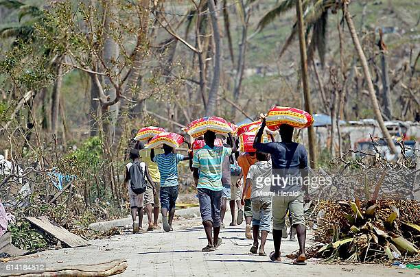 Young men carry bags of rice they got from a food distribution center to their families near Port Salut Haiti on Sunday Oct 9 2016