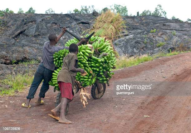 young men with a heavy load of bananas, eastern Congo