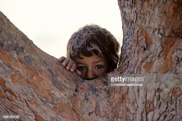 A young Mexican boy looking watching mehiding behind a tree Photographed in Xcalac Quintana RooMexico