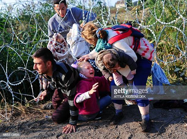 A young migrant's hair becomes stuck while crawling under a barbed fence with her family at the HungarianSerbian border near Roszke on August 27 2015...