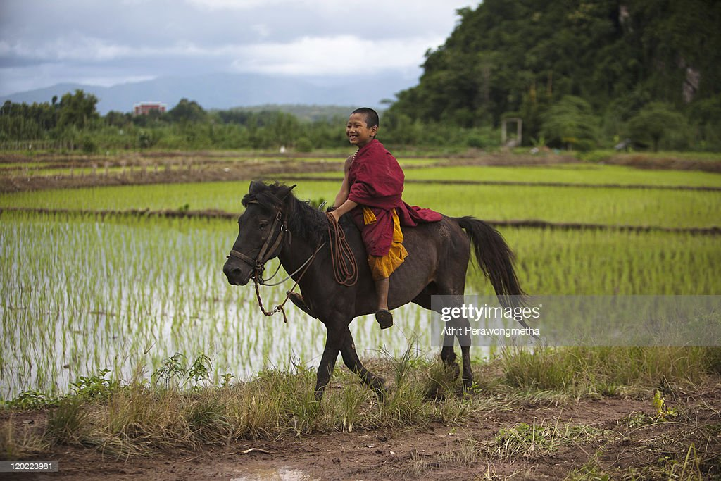 A young monk from the Golden Horse Monastery rides a horse during afternoon duty on August 1, 2011 in Chiang Rai, Thailand. The monastery, founded by former Thai boxing champion Phra Kru Ba Neua Chai who became a Buddhist monk , takes in destitute children, training them in equestrian skills on horses, many of which have been saved from slaughterhouses, and Thai boxing. .