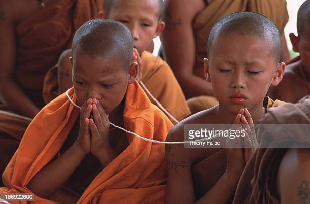 Young monks during a prayer and meditation session at Wat Phra Archa Thong the Golden Horse Monastery
