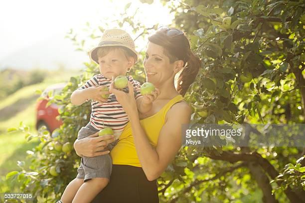 Giovane madre e Suo figlio di prendere mele
