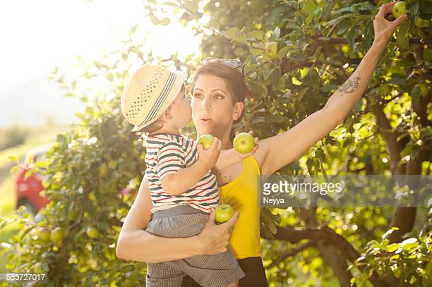 Young Mother and her Son Picking Apples