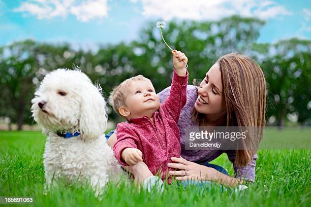 Young Mother and Son in the park with a dog