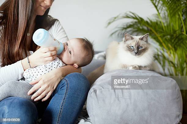 Young mother bottle-feeding baby with cat on couch