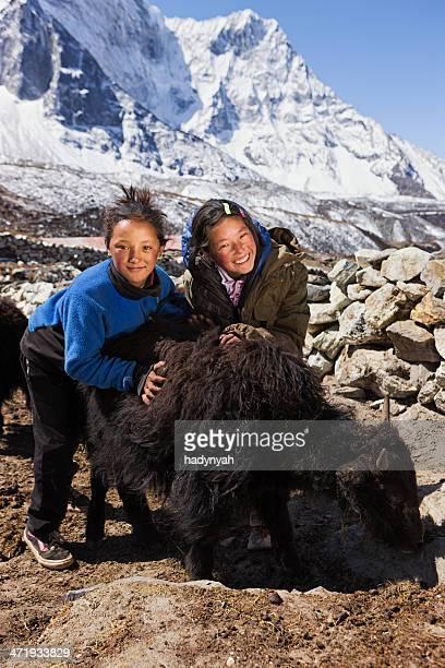 Young Nepali girls playing with yaks