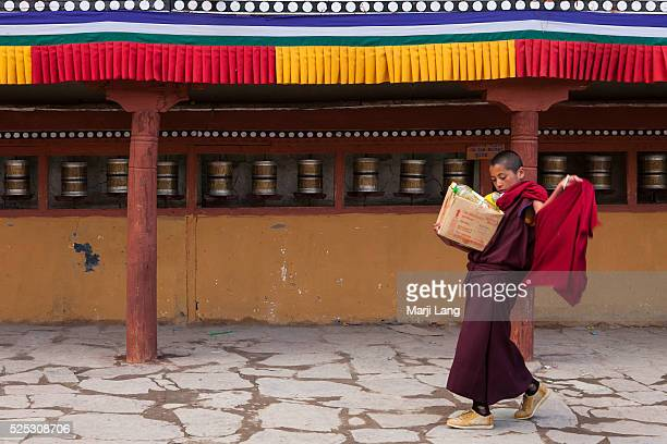 A young novice monk carrying oil for the annual Tsechu festival in Hemis gompa Ladakh Jammu and Kashmir India
