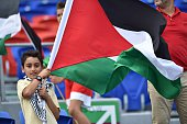 A young Palestinian boy waves a flag before their Group D football match against Japan in the AFC Asian Cup in Newcastle on January 12 2015 AFP...