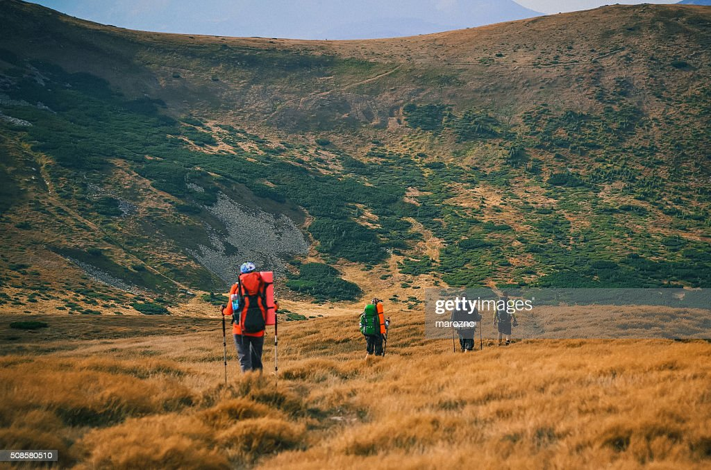 Young people are hiking in Carpathian mountains in summertime : Stock Photo