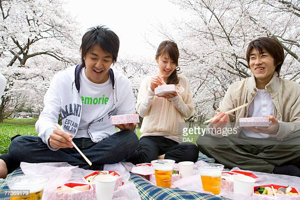 Young people enjoying lunch surrounded with cherry blossoms, front view, Japan