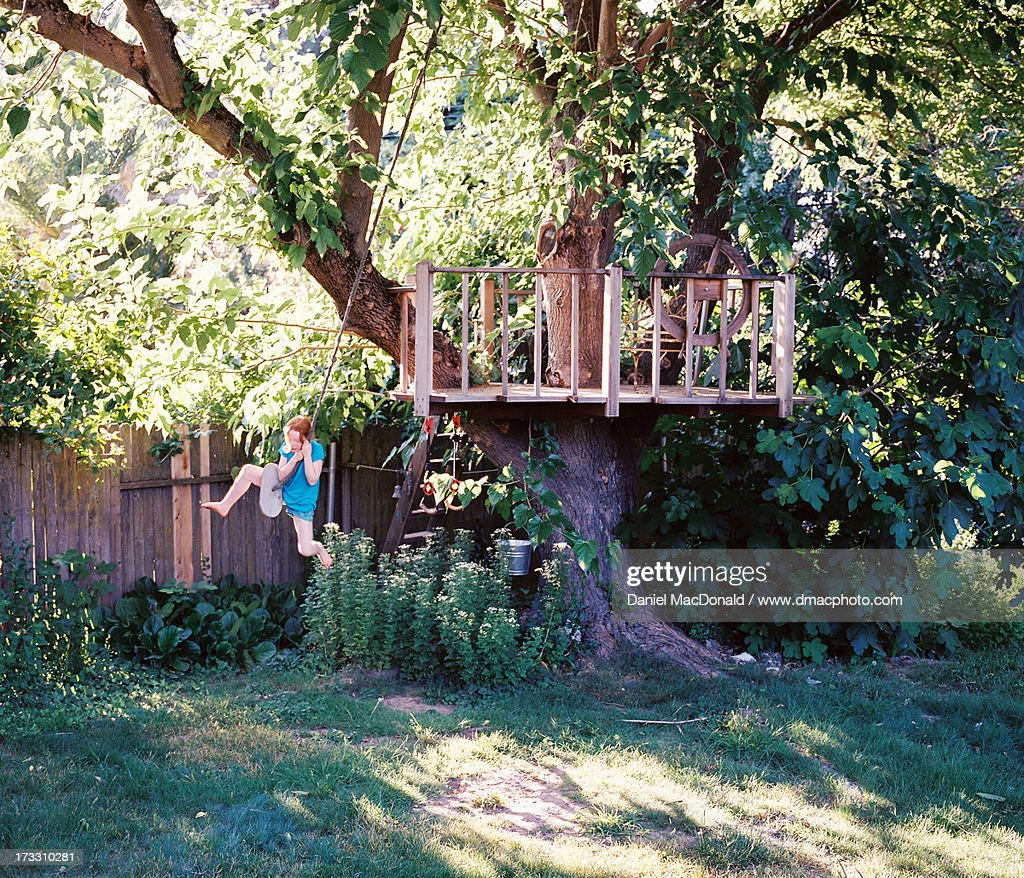 tree house stock photos and pictures getty images