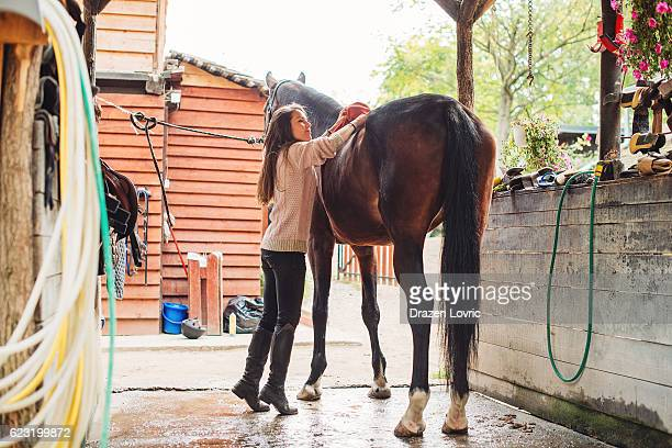 Young rider brushing and cleaning her mare in stable