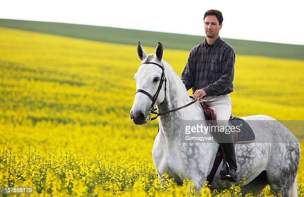 Young rider in canola
