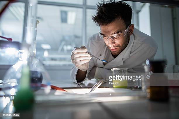 Young scientist examining chemical substances in a laboratory.