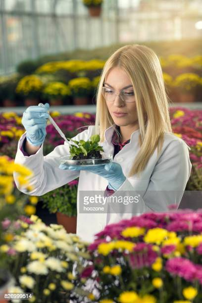 Young scientist in the greenhouse