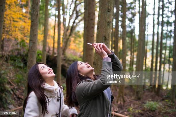 若い姉妹見ていると森で写真を撮る