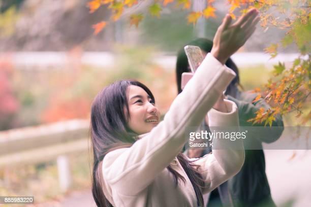紅葉の写真を撮る若い姉妹