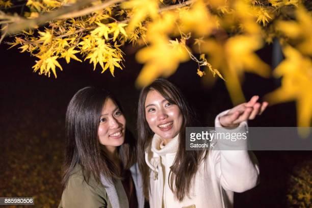 夜に紅葉を見ている若い姉妹