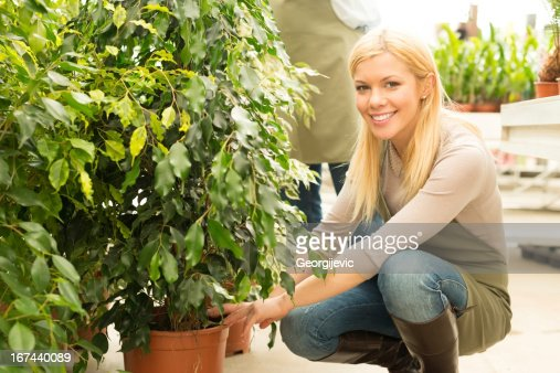 Young smiling florist working in greenhouse : Stock Photo