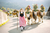 Young Swiss farmer girl leading decorated cows to fair