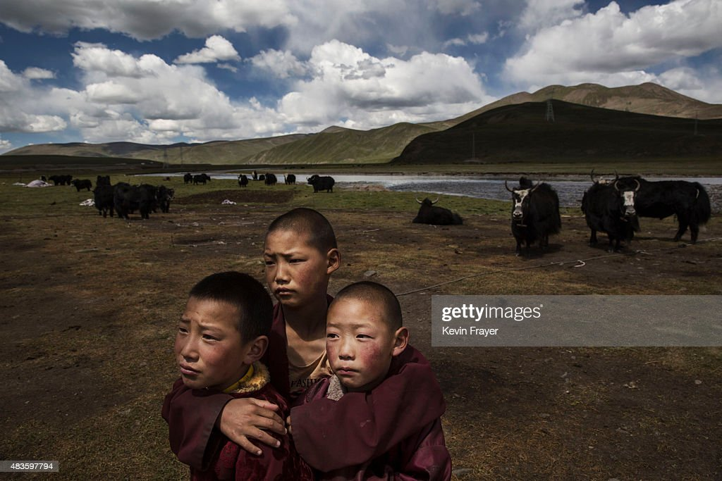 Young Tibetan Buddhist novice monks stand in the grasslands of their nomadic camp on July 24 2015 on the Tibetan Plateau in Madou County Qinghai...