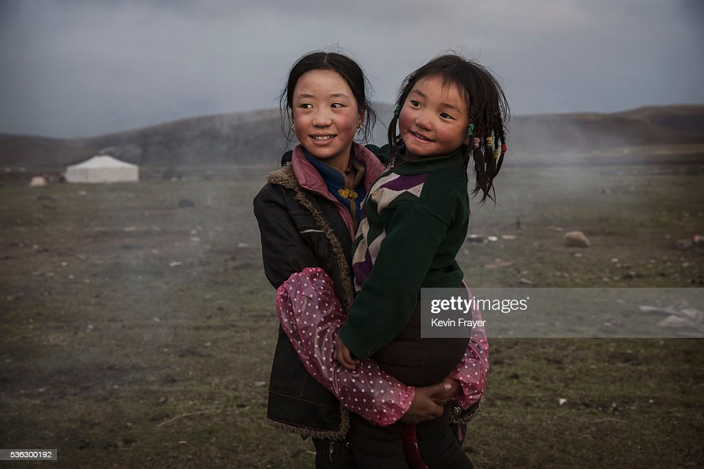 A young Tibetan nomad girl holds her sister at a temporary camp for picking cordycep fungus on May 22, 2016 on the Tibetan Plateau near Sershul in the Garze Tibetan Autonomous Prefecture of Sichuan province. The Tibetan Plateau is home to the cordyceps fungus, also known as caterpillar fungus, is a parasitic spore that thrives in high altitude, low temperature conditions on the Tibetan plateau. While not historically a part of Tibetan culture, cordyceps are a prized ingredient of traditional Asian medicinal treatments that purportedly heal ailments ranging from asthma to impotence to cancer. Demand in China alone has created a booming economy for what Tibetans call yartsa gunbu, or summer grass, winter worm, which sells for up to $50,000 US per pound. As the state-supported cordyceps industry has developed, Tibetans who rely primarily on farming and herding have turned to the weeks-long harvest as a means of earning income to last through the year. The annual gold rush has transformed parts of rural Tibetan areas, generating about 40% of the local economy. However, environmentalists increasingly warn that over-harvesting of cordyceps carries the cost of degradation to mountain grasslands that are essential for yak and cattle grazing. Due to below average rainfall the 2016 harvest is expected to be the lowest on record with many harvesters reporting yields way lower then expectations.
