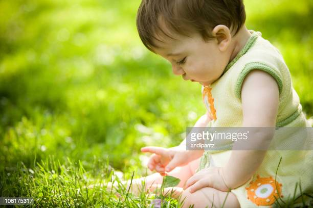Young toddler girl sitting in grass on a sunny day
