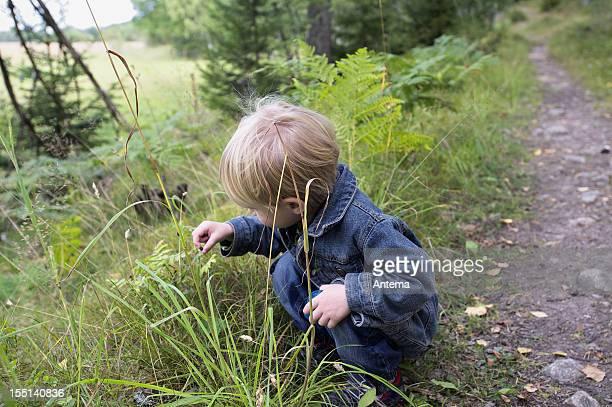 Junge Kleinkind mit blonden Haaren