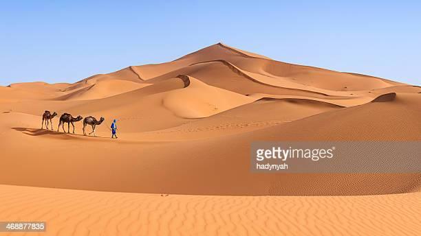 Jovem Tuaregue com camelo no Saara Ocidental, África 36MPix