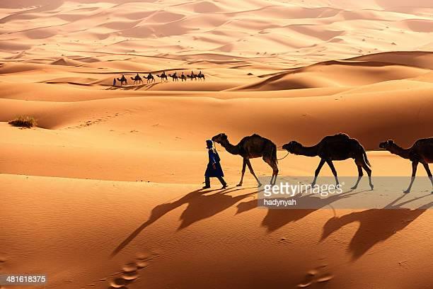 Jeune Culture touareg avec chameau sur Sahara occidental en Afrique