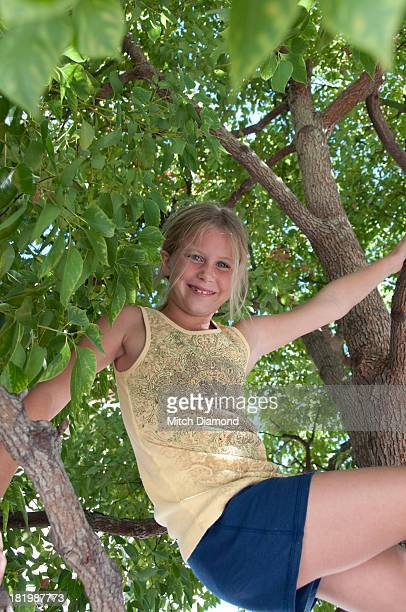 young upside down in tree