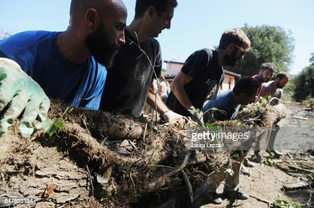 Young volunteers and and the soccer team livorno ultras help clean the mud from a house badly damaged in flooding during Sundays rainstorm on...