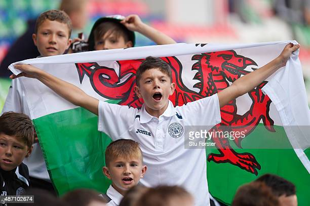 A young Wales fan enjoys the pre match atmosphere during the UEFA EURO 2016 group B qualifying match between Wales and Israel at Cardiff City Stadium...