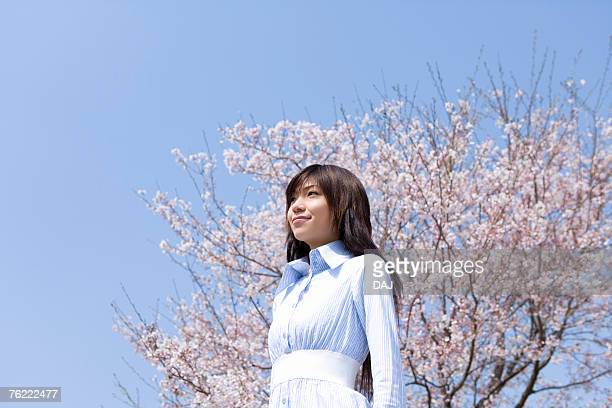 Young woman and cherry tree under the blue sky, low angle view, side view, blue background, Japan