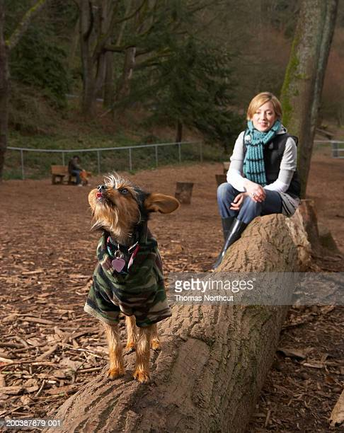 Young woman and dog atop log in dog park (focus on dog in foreground)