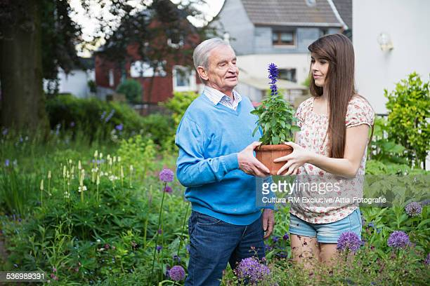Young woman and grandfather with pot plant in garden