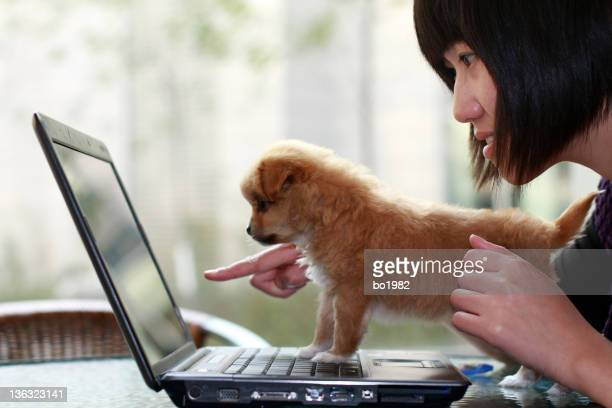 young woman and her dog  looking at computer