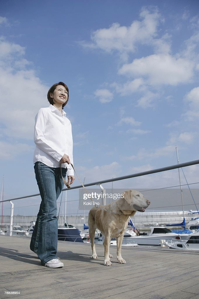 Young woman and Labrador retriever : Stock Photo